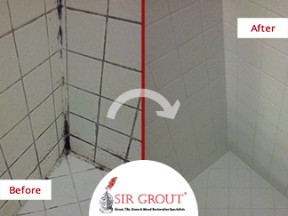 Do You Have Mold And Mildew In Your Shower See How A Tile Grout - Clean and seal grout lines