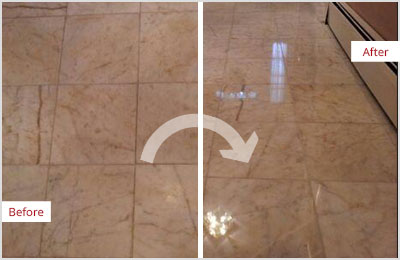 Sir Grout Tan Marble Hone and Polish