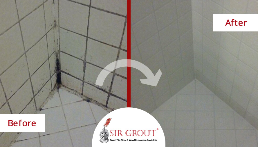 Mold and Mildew in Your Shower? See How a Tile & Grout Cleaning and Sealing Can Help Before & After