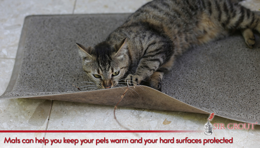 Mats can help you keep your pets warm and your hard surfaces protected