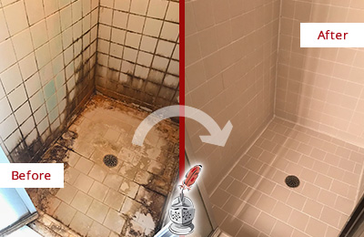 Picture of Tile Shower Plagued with Mold and Mildew Before and After Cleaning Tile and Grout
